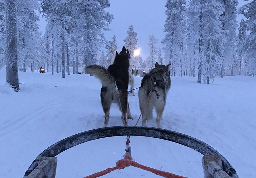 The Activities at Kakslauttanen Arctic Resort