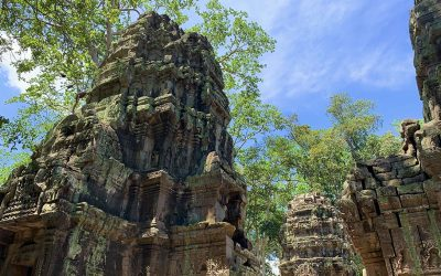 The Temples of Angkor: Ta Prohm, Angkor Thom, and Angkor Wat