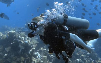 Scuba Diving is One of the Greatest Activities to Try on Vacation!
