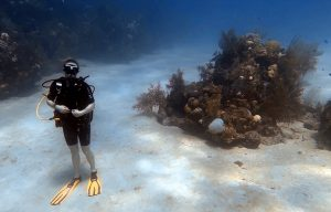 diving-roatan-scuba-diving-is-getting-certified-right-for-you