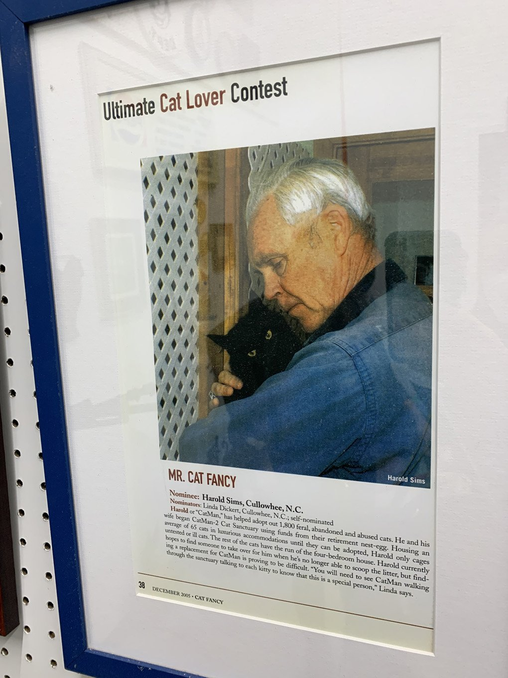 museum-of-the-house-cat-north-carolina-harold-sims-malories-adventures-weird-world-adventures (2)