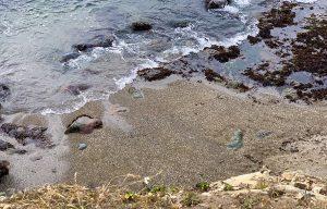 glass-beach-fort-bragg-malories-adventures-malorie-mackey-northern-ca-travel-mendocinosm