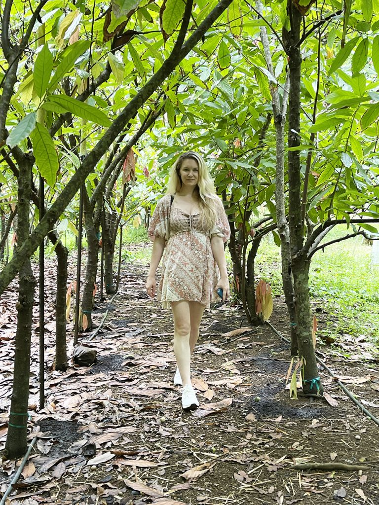 lydgate-farms-chocolate-tour-kauai-hawaii-malories-adventures