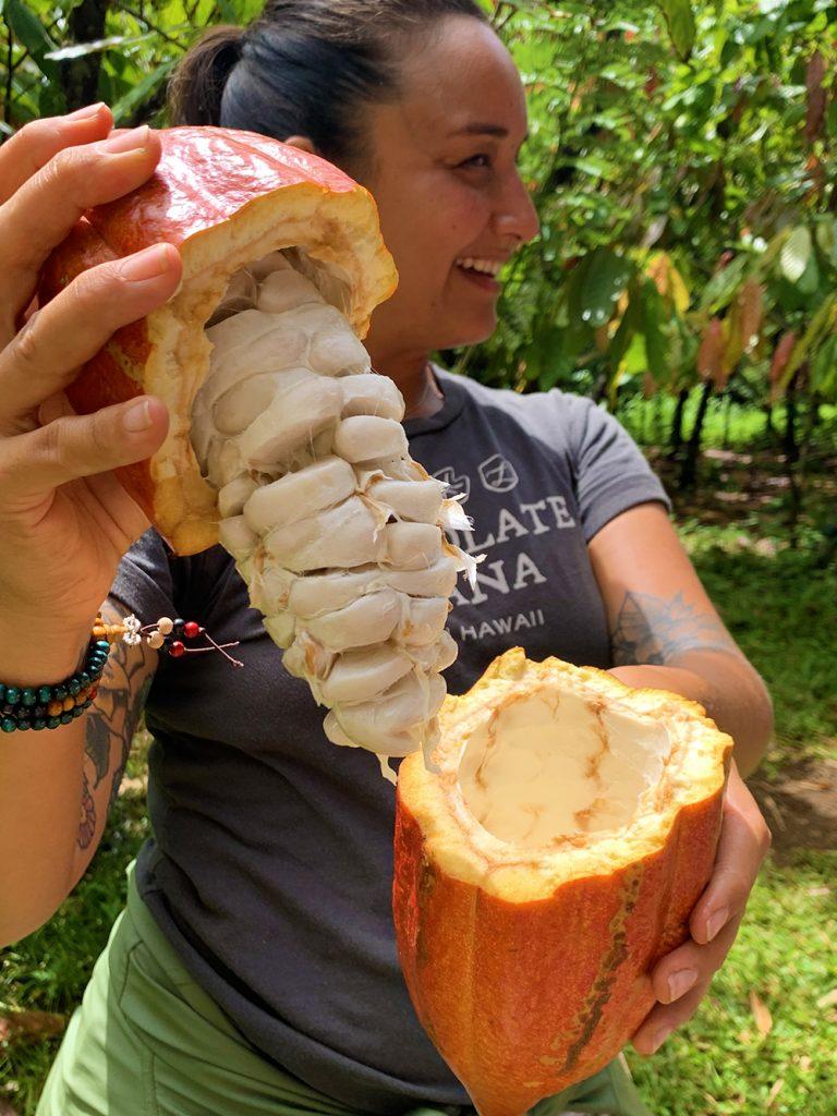 lydgate-farms-chocolate-tour-kauai-hawaii-malories-adventures (5)
