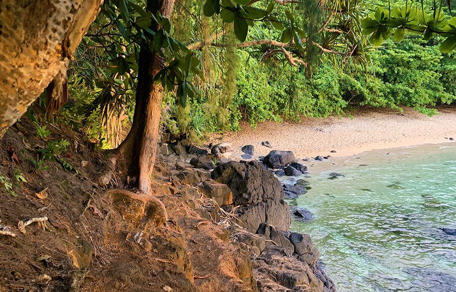 malories-adventures-kauai-hawaii-hidden-beach-sealodge-beach-at-sunset-sm-header
