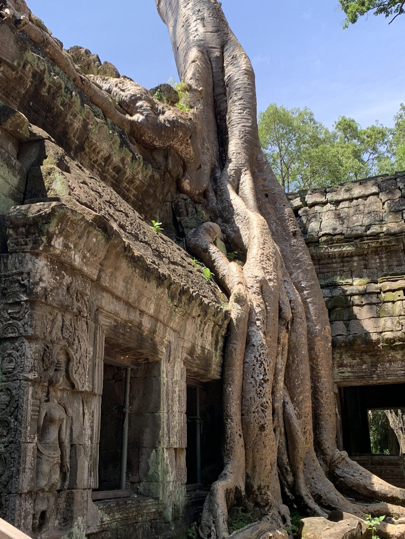 the-temples-of-angkor-angkor-wat-cambodia-adventure-exploring-traveling-malories-adventure